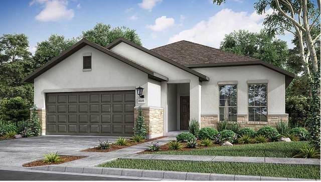 105 Majestic Sage Trl, San Marcos, TX 78666 (#7242348) :: Papasan Real Estate Team @ Keller Williams Realty