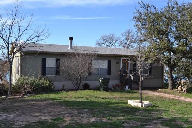 712 N Chaparral, Burnet, TX 78611 (#7248570) :: Papasan Real Estate Team @ Keller Williams Realty