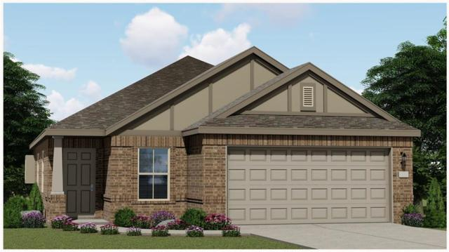 804 Kate's Way, Hutto, TX 78634 (#7248743) :: Ana Luxury Homes