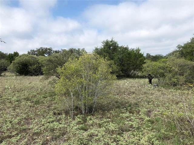 Lot 6 Vista View Trl, Spicewood, TX 78669 (#7249072) :: Green City Realty