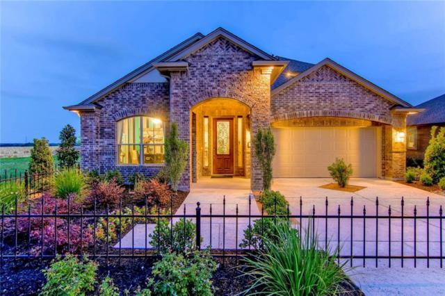 16233 Marcello Dr, Pflugerville, TX 78660 (#7265737) :: The Perry Henderson Group at Berkshire Hathaway Texas Realty