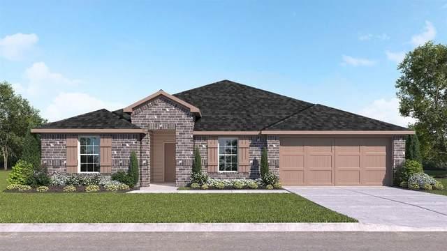 442 Colovista Pkwy, Bastrop, TX 78602 (#7277542) :: Papasan Real Estate Team @ Keller Williams Realty