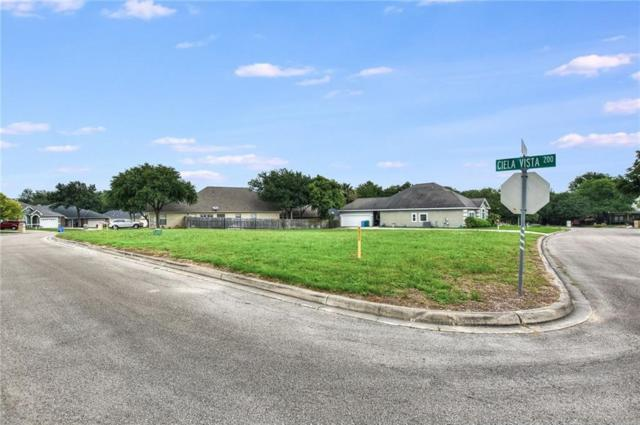 209 Ciela Vis, Seguin, TX 78155 (#7287482) :: The Heyl Group at Keller Williams