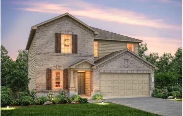 11609 Amber Stream Ln, Manor, TX 78653 (#7314875) :: Ana Luxury Homes