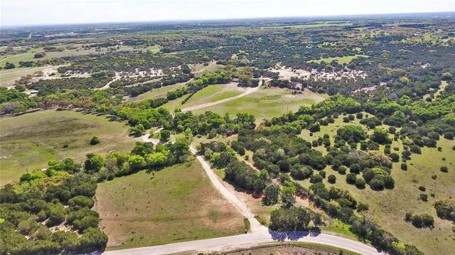 6201 County Road 252, Bertram, TX 78605 (#7315568) :: RE/MAX Capital City
