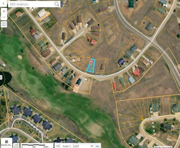 350 Midiron Rd, Out of State, CO 81147 (#7316272) :: Ben Kinney Real Estate Team
