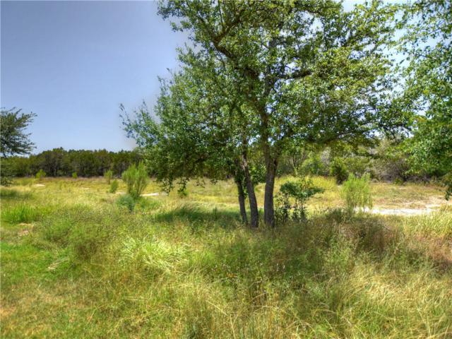 423 Kickapoo Creek Ln, Georgetown, TX 78633 (#7318037) :: The ZinaSells Group