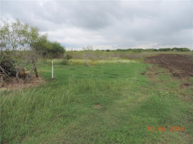 1159 Tract No 1 County Road 406, Taylor, TX 76574 (#7335551) :: The Gregory Group