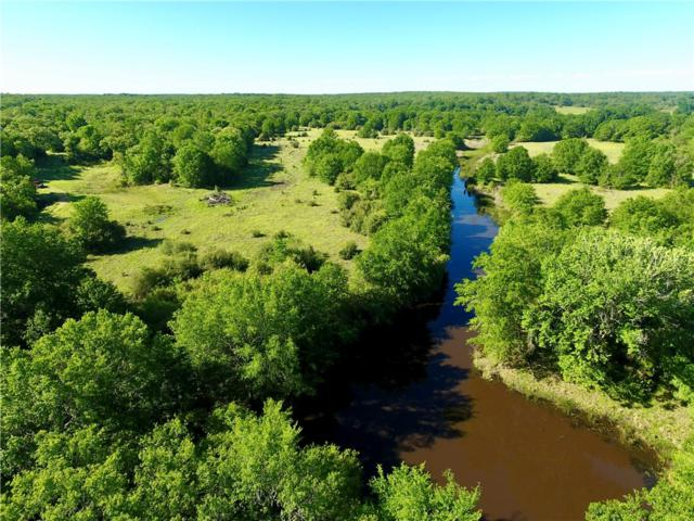 000 County Rd 359, Gause, TX 77857 (#7337419) :: The Smith Team