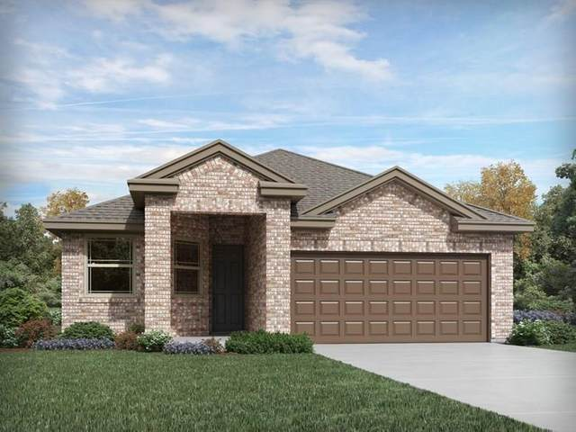 13607 Primrose Petal Dr, Manor, TX 78653 (#7337692) :: The Perry Henderson Group at Berkshire Hathaway Texas Realty