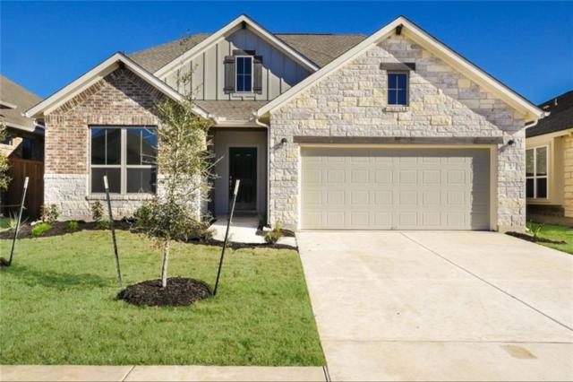 313 Vista Portola Loop, Liberty Hill, TX 78642 (#7343308) :: The Perry Henderson Group at Berkshire Hathaway Texas Realty