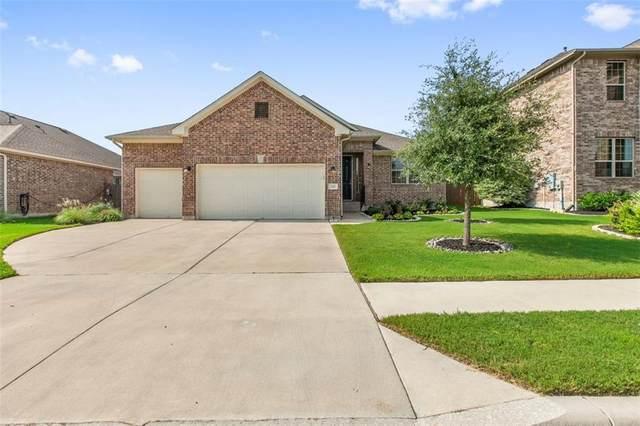 226 N Sage Holw, Dripping Springs, TX 78620 (#7354353) :: Papasan Real Estate Team @ Keller Williams Realty