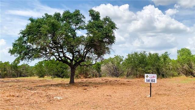 Lot 153 E. Flying Owl Dr, Johnson City, TX 78636 (#7360596) :: Papasan Real Estate Team @ Keller Williams Realty