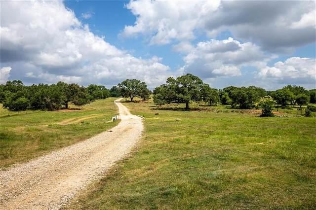 10120 W State Highway 46, New Braunfels, TX 78132 (#7369909) :: Papasan Real Estate Team @ Keller Williams Realty