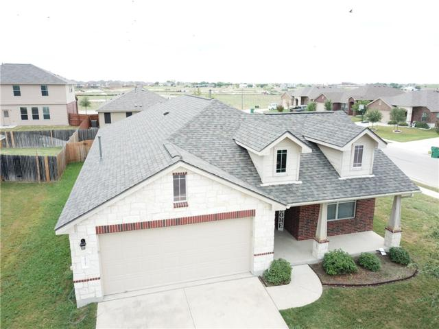 20201 Merlin Falcon Trl, Pflugerville, TX 78660 (#7400105) :: The Heyl Group at Keller Williams