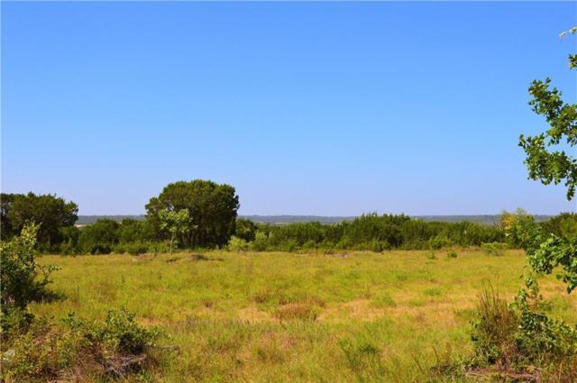 10000 N Fm 1174, Burnet, TX 78611 (#7406224) :: Papasan Real Estate Team @ Keller Williams Realty