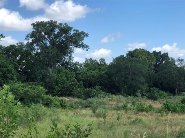 0000 Walter Hoffman Rd, Cedar Creek, TX 78612 (#7406242) :: The ZinaSells Group