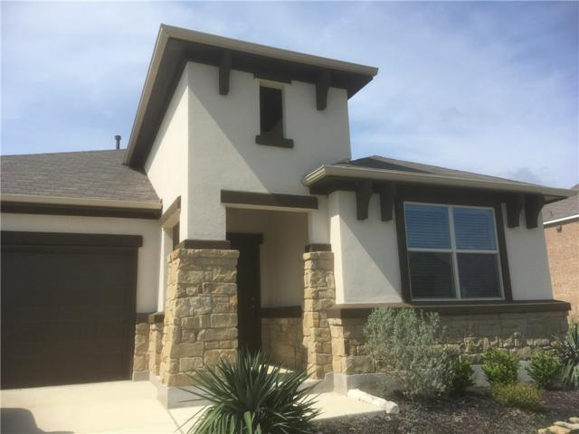 241 W Mary Max Cir E, San Marcos, TX 78666 (#7410259) :: Realty Executives - Town & Country