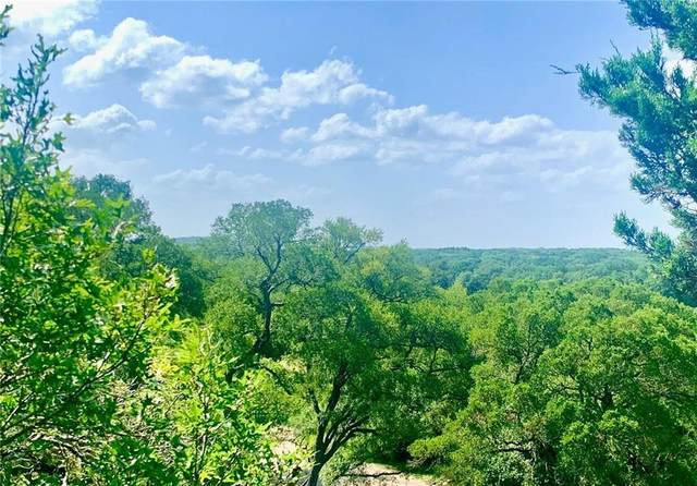 150 Shady Bluff Dr, Wimberley, TX 78676 (#7410844) :: Front Real Estate Co.