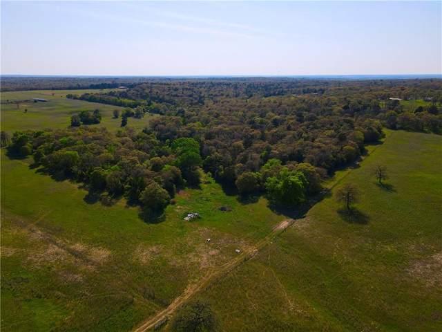 TBD County Road 238A #14, Cameron, TX 76520 (#7411726) :: Zina & Co. Real Estate