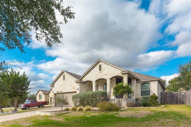 17614 Sly Fox Dr, Dripping Springs, TX 78620 (#7424693) :: The Perry Henderson Group at Berkshire Hathaway Texas Realty