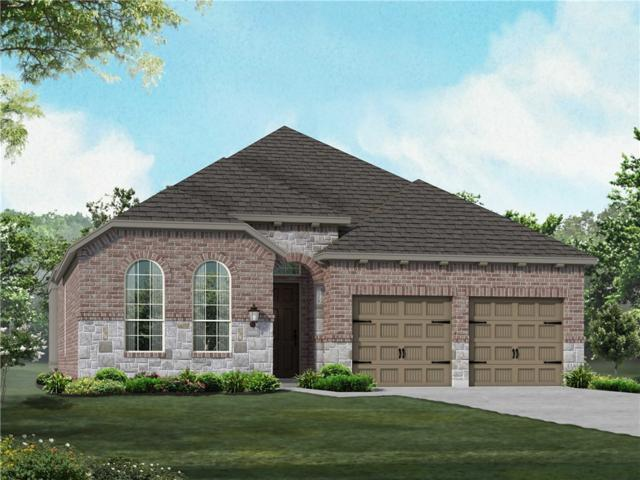 3424 De Soto Loop, Round Rock, TX 78665 (#7430712) :: 12 Points Group