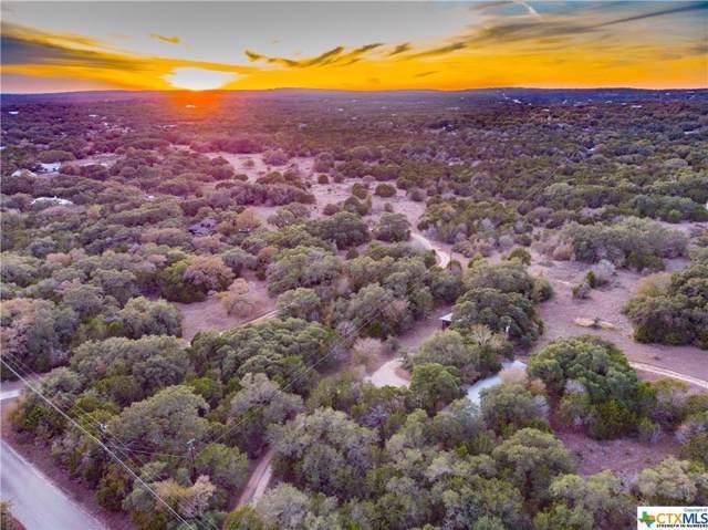 521 Oakwood Loop, San Marcos, TX 78666 (#7443228) :: The Perry Henderson Group at Berkshire Hathaway Texas Realty