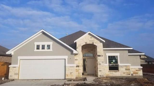 20229 Clare Island Bnd, Pflugerville, TX 78660 (#7457657) :: R3 Marketing Group