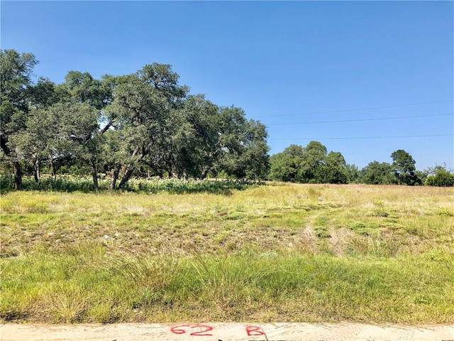 1715 Nature View Loop, Driftwood, TX 78619 (#7464868) :: Realty Executives - Town & Country