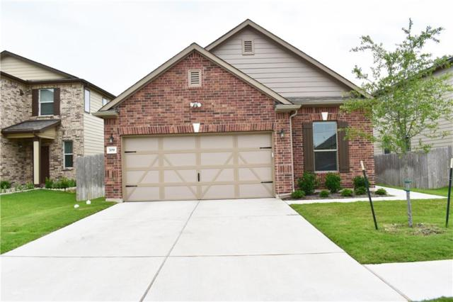 709 Screech Owl Dr, Pflugerville, TX 78660 (#7465101) :: Lancashire Group at Keller Williams Realty