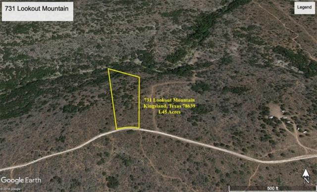 731 Lookout Mtn, Kingsland, TX 78639 (#7467427) :: 12 Points Group