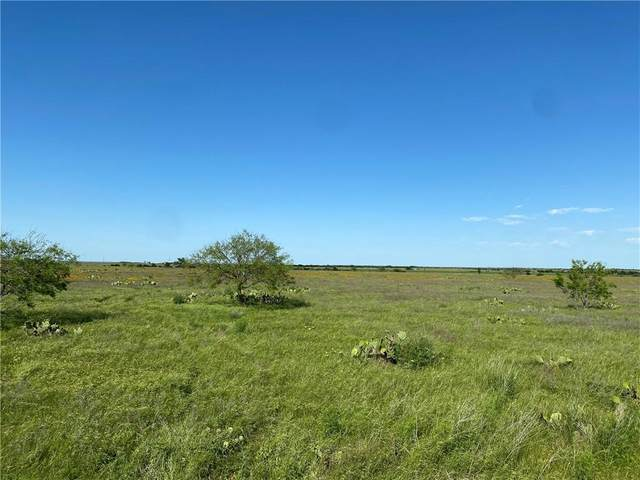 TBD Fm 963, Bertram, TX 78605 (#7470303) :: Realty Executives - Town & Country