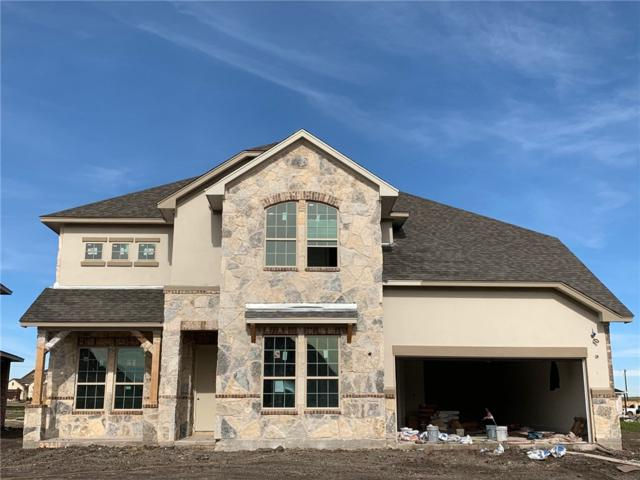 3364 Vasquez Pl, Round Rock, TX 78665 (#7470422) :: Austin Portfolio Real Estate - The Bucher Group