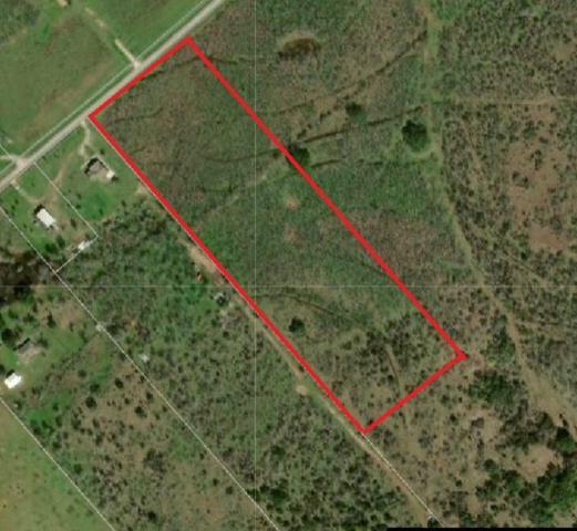101 Acres Callihan Rd, Luling, TX 78648 (#7519569) :: Watters International