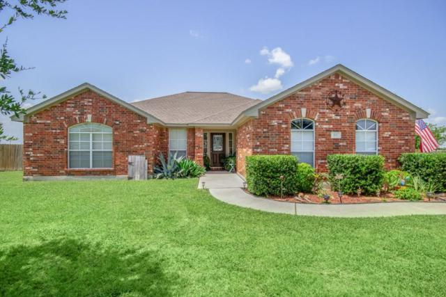 115 Blanco Dr, Hutto, TX 78634 (#7522149) :: Watters International
