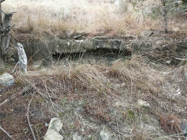 100 S Creek Cir, Bertram, TX 78605 (#7543748) :: 12 Points Group