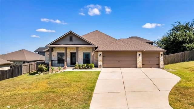 17912 Linkhill Dr, Dripping Springs, TX 78620 (#7544037) :: Ben Kinney Real Estate Team