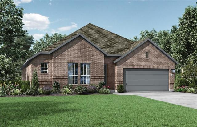 20305 Artic Loon Pass, Pflugerville, TX 78660 (#7559780) :: The Gregory Group