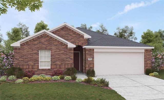 13812 Arbor Hill Cv, Manor, TX 78653 (#7560860) :: The Heyl Group at Keller Williams