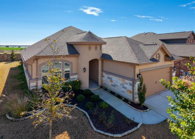 3233 Aurelia Ln, Round Rock, TX 78665 (#7563895) :: Papasan Real Estate Team @ Keller Williams Realty