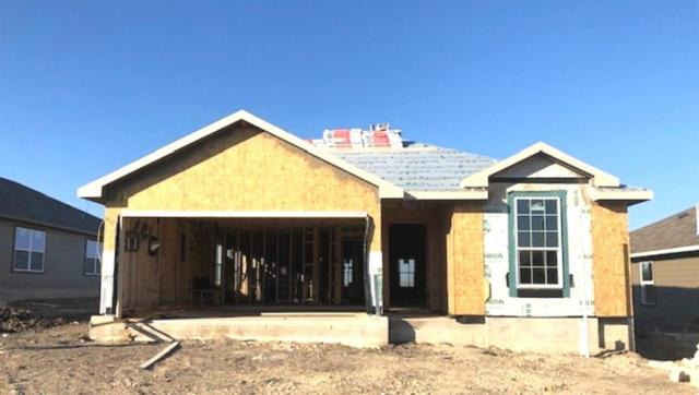 209 Dieter Drive, San Marcos, TX 78666 (#7587622) :: The Gregory Group