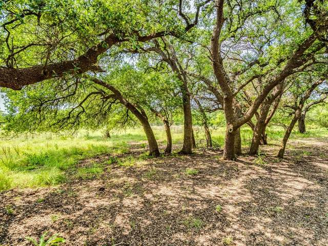605 Butler Ranch Rd, Dripping Springs, TX 78620 (#7592982) :: ONE ELITE REALTY
