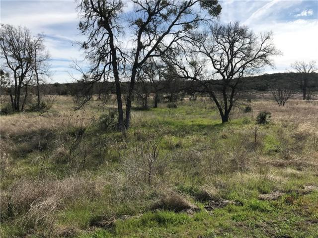 Lot 52-54 Pristine Pass, Buchanan Dam, TX 78609 (#7595129) :: Realty Executives - Town & Country