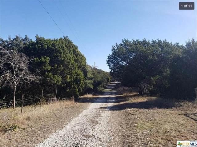 8565 N 183rd Highway, Briggs, TX 78608 (#7610218) :: Papasan Real Estate Team @ Keller Williams Realty