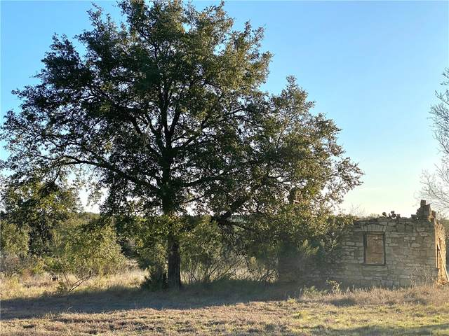 Lot 11, Round Mountain, TX 78663 (#7622553) :: Azuri Group | All City Real Estate
