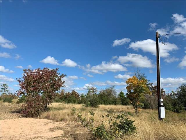 135 Wild Bird Loop, Smithville, TX 78957 (#7657769) :: Watters International