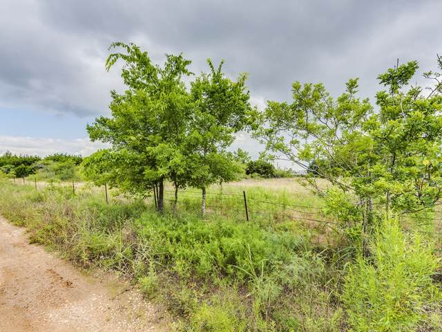Tract 1 and 2 Kelley Ln, Buda, TX 78610 (#7659865) :: Front Real Estate Co.