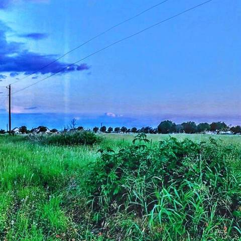 401 County Road 148, Georgetown, TX 78626 (#7669939) :: Papasan Real Estate Team @ Keller Williams Realty