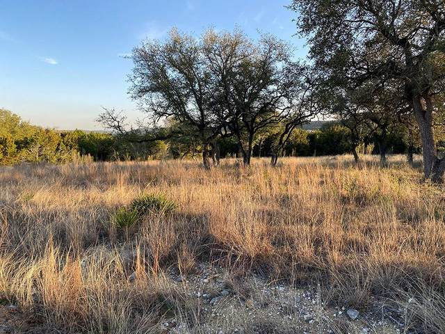 Lot 98 Whitewater Dr, Bertram, TX 78605 (#7677971) :: Zina & Co. Real Estate