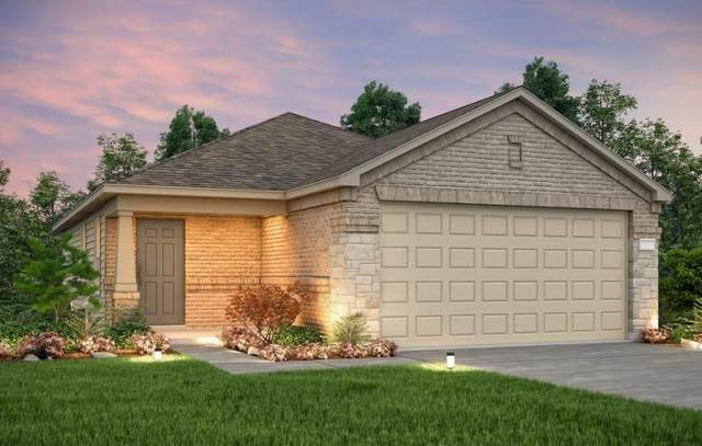 173 Green Egret Way, Leander, TX 78642 (#7697293) :: Service First Real Estate